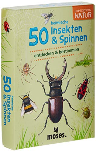 moses. Expedition Natur - 50 heimische Insekten und Spinnen| Bestimmungskarten im Set | Mit...