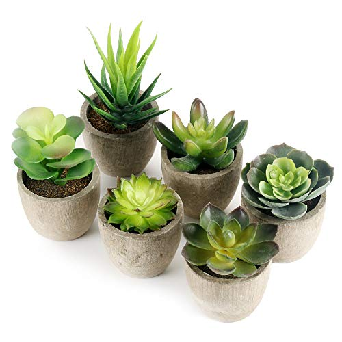GoMaihe Kunstpflanze Künstliche Sukkulenten Pflanze 6 Stücke mit Grauem Topf, 6 x 8cm Mini...