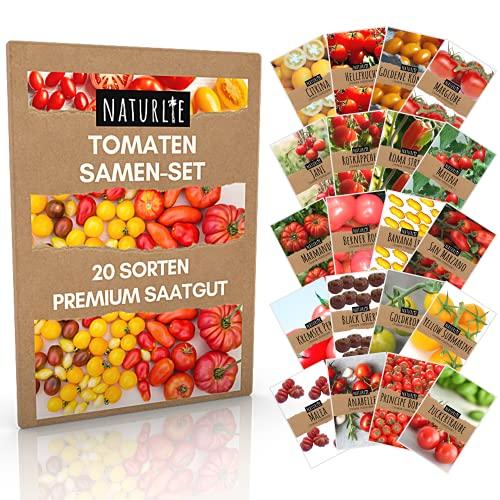20er Tomaten Samen Set - 20 Sorten Tomatensamen für Balkon und Garten - Tomaten Anzuchtset - bunte...