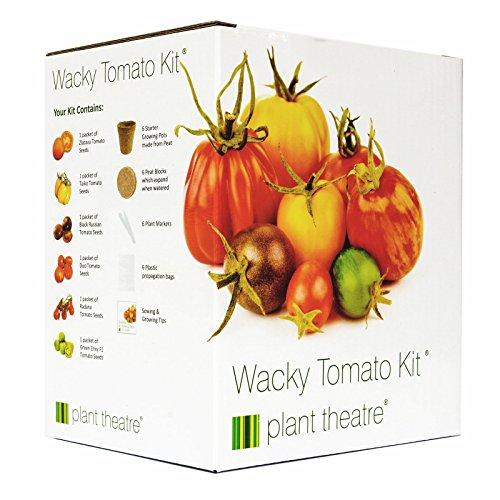 Plant Theatre Kit Wacky Tomatoes - 6 fantastischen Sorten zum Anbauen, ein großartiges Geschenk