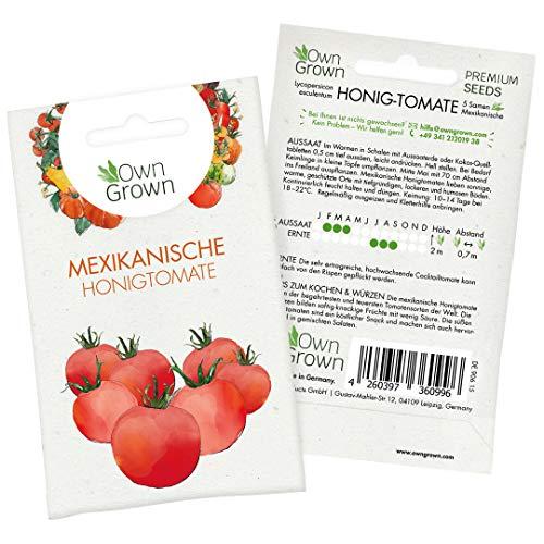 Tomaten Samen Mexikanische Honigtomate: Premium Cocktailtomaten Samen zum einfachen Anbau von...