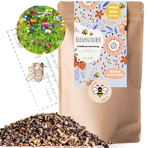 Bienenwiese I 100g I 100m² Blumenwiese Samen mehrjährig und einjährig I Samen für Bienen...