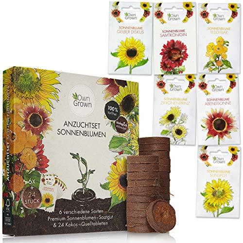Sonnenblumen Anzuchtset mit 6 Sorten und 24 Kokos Quelltabletten zum einfachen Anbau: Sonnenblumen...