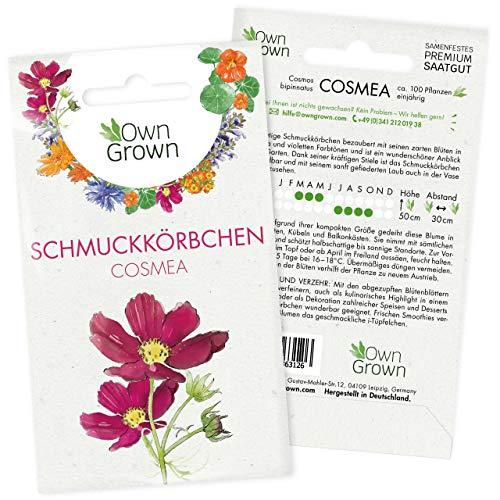 Cosmea Samen Bunt: Premium Schmuckkörbchen Cosmeen Samen für 100x blühende Schmuckkörbchen...