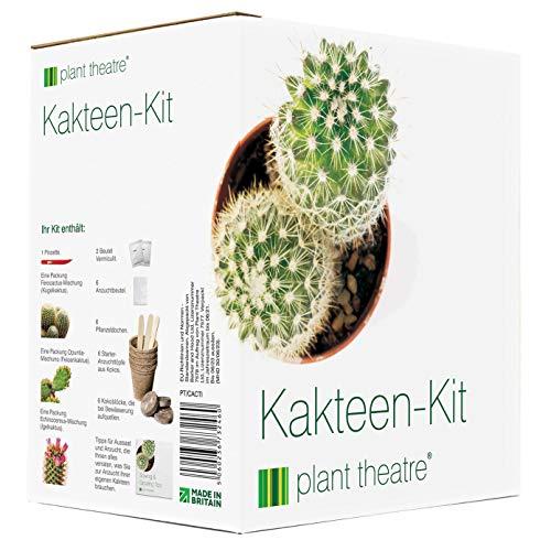 Plant Theatre Kakteen-Kit - Geschenk-Samen-Kit Kakteen. Alles, was Sie zum Pflanzen von tollen...