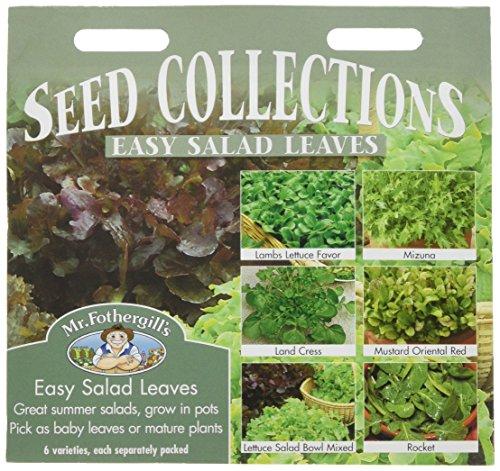 Mr Fothergills Pilzsporen, einfach Salat hinterl sst Collection 6 Sorten Samen