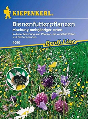 Kiepenkerl Bienenfutter Mischung (Bienenfutterpflanzen) 0-0cm / 1 Packung (Blumenzwiebeln,...