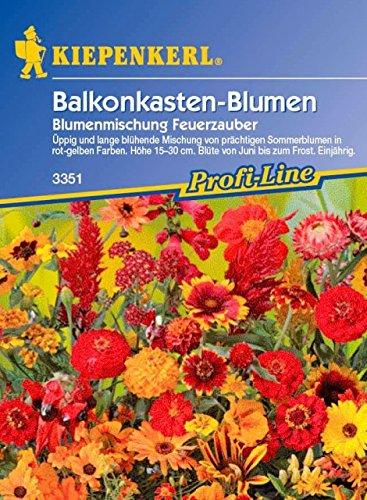 Kiepenkerl Balkonkastenblumen Mischung (Balkonkastenblumen Feuerzauber) 0-0cm / 1 Packung...