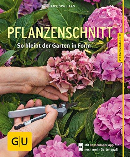 Pflanzenschnitt: So bleibt der Garten in Form