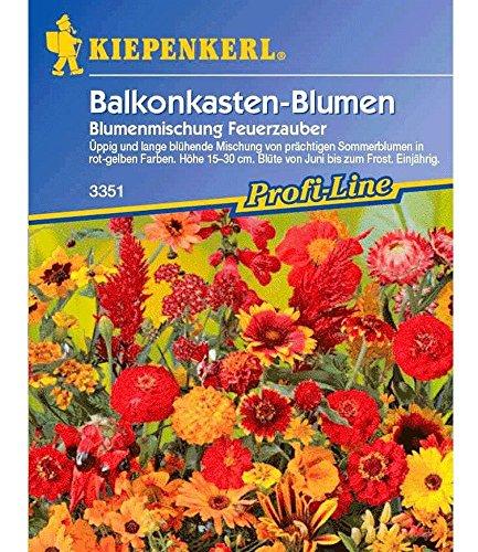 Blumen-Mix 'Feuerzauber', 1 Tüte Samen