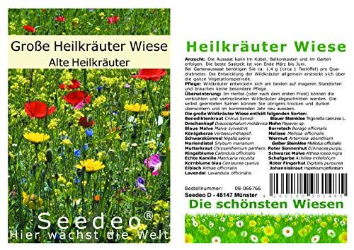 Seedeo Die große Heil-Wildkräuter Wiese