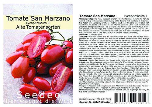 Seedeo® Tomate San Marzano (Lycopersicum L.) 30 Samen BIO