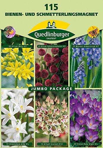 Quedlinburger 15027 Bienen- & Schmetterlingsmischung (115 Stück) (Blumenzwiebeln)