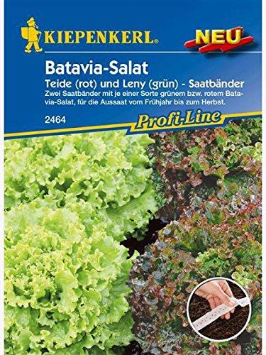 Salat (Batavia-Salat) Teide (rot) und Leny (grün) Batavia-Mix Saatband 2x2,5m
