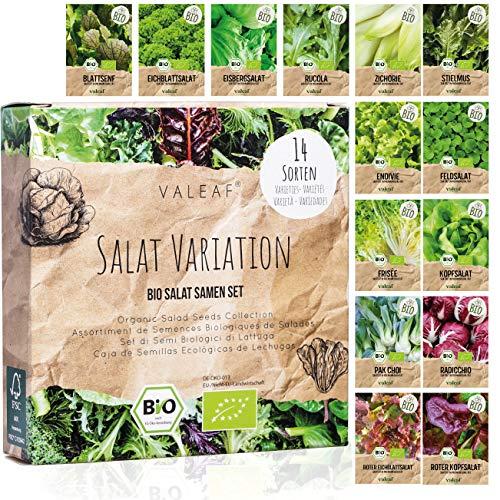 BIO Salat Samen Set - 14 Sorten Salatsamen aus biologischem Anbau I samenfestes Salat Saatgut I Bio...