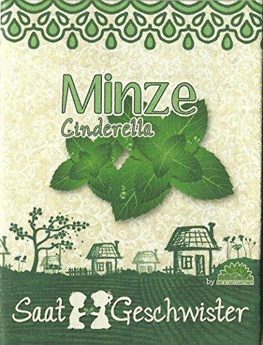 Die Stadtgärtner Minze'Cinderella'-Saatgut (frischer Geschmack)