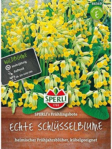 Sperli Blumensamen Schlüsselblume Frühlingsbote, grün