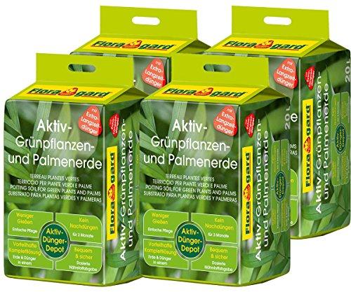Floragard Aktiv-Grünpflanzen- und Palmenerde 4x20 L • Spezialerde für Palmen, Farne, Ficus,...