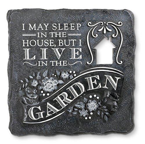 Grasslands Road I Live in The Garden Zement Trittstein (3Pack), 25,4cm/mittel, Multicolor