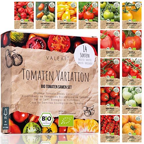 BIO Tomaten Samen Set - 14 Sorten Tomatensamen aus biologischem Anbau, samenfestes Tomaten Saatgut,...