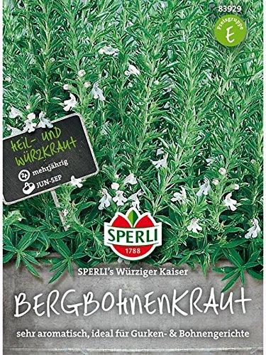 Sperli Gemüsesamen Bohnenkraut Würziger Kaiser, grün