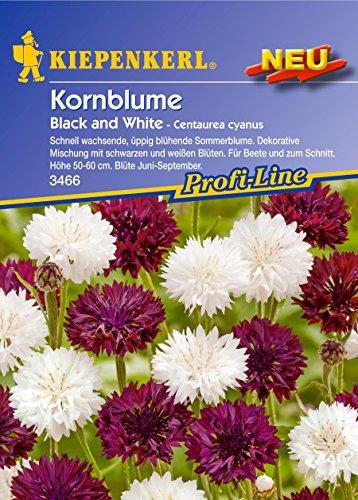 Kiepenkerl Centaurea cyanus (Kornblume Black and White) 0-0cm / 1 Packung (Blumenzwiebeln,...