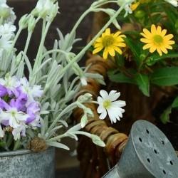Geschenkideen für die Gartenarbeit